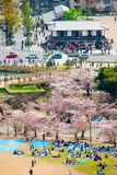 Вне замка Himeji стоковые фото