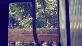 Вне окна Стоковые Изображения RF