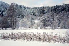 Вне спойте в снежном ландшафте, здравствуйте! весна, до свидания концепция зимы Стоковое Изображение