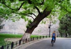 Вне стены запретного города, Пекин, Китай Стоковые Фотографии RF