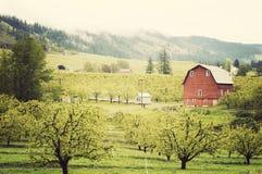 Вниз в долине Стоковое фото RF