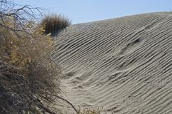 Вниз в песчанных дюнах пустыни стоковая фотография rf