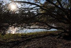 Вниз на ферме и озере Стоковое Изображение RF