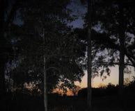 Вниз на ферме и озере Стоковое Изображение