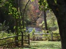 вниз путь сада Стоковая Фотография