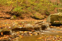 Вниз река от голубой курицы падает в осень стоковая фотография