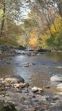 вниз река Стоковые Изображения RF
