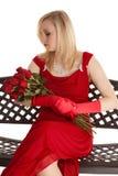 вниз смотреть розы Стоковая Фотография RF