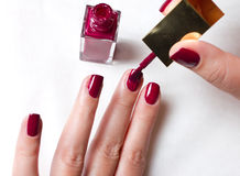 внимательность вручает женщин ногтя s Стоковое Изображение