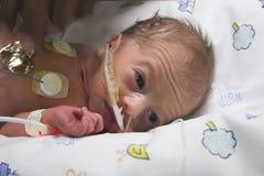 внимательность младенца Стоковое Фото
