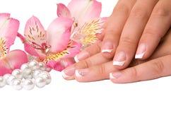 Внимательность ногтя для рук женщин Стоковое Изображение RF