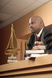 внимательный справедливый судья Стоковые Изображения RF