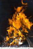 Вносит дальше пожар в журнал Стоковое фото RF