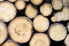 вносит деревянное в журнал Стоковые Фотографии RF