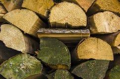 вносит деревянное в журнал Стоковое фото RF