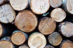вносит древесину в журнал Стоковое Изображение RF