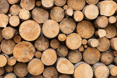 вносит древесину в журнал Стоковые Изображения RF