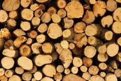 вносит древесину в журнал стоковое фото