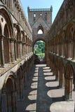 Внутреннее аббатство Jedburgh Стоковое фото RF