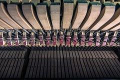 внутренние шнуры splittings рояля Стоковые Фото