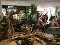 Внутренний взгляд на реновации Bangkae мола стоковое фото