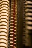 внутренний рояль Стоковые Изображения RF