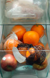 внутренний холодильник Стоковое Изображение