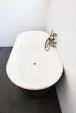 Внутренняя сверстница белой ванной комнаты Стоковое Изображение RF