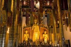 Внутри виска с большим золотым Buddhas Chiang Mai, Таиланд стоковые изображения rf