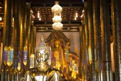 Внутри виска с большим золотым Buddhas Chiang Mai, Таиланд стоковая фотография rf