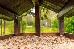 Внутри birdhouse Стоковое Изображение RF