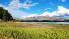 Внушительное озеро Tekapo, Новая Зеландия Стоковое Изображение RF