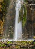 Внушительный маленький и милый водопад стоковая фотография