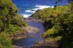 вода бассеинов hana высокая maui естественная Стоковая Фотография