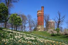 вода башни парка eden Стоковое Изображение