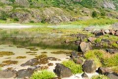 Вода бирюзы прозрачная залива, Lofoten, Норвегии Стоковая Фотография RF
