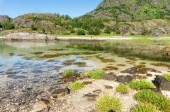 Вода бирюзы прозрачная залива, Lofoten, Норвегии Стоковые Фотографии RF
