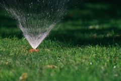 Вода брызга спринклера на зеленой траве стоковая фотография rf