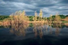 вода валов Стоковая Фотография RF