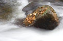 вода валуна Стоковые Изображения RF