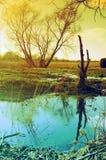 вода весны снежка стоковое фото