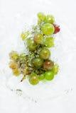 вода виноградин Стоковые Изображения RF