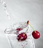 вода вишни Стоковое Фото