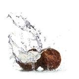 вода выплеска кокосов Стоковое Изображение RF