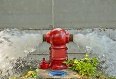 вода гидранта пожара фонтанируя красная Стоковое Изображение RF