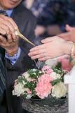 Вода гостя лить с руками жениха и невеста в выпуске обновленного изделия воды Стоковое Изображение