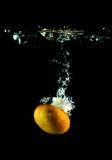 вода гриба Стоковое Изображение