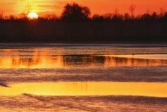 вода захода солнца птиц Стоковое Изображение RF