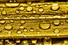 вода золота стоковые фото