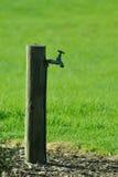 вода из крана парка стоковые изображения